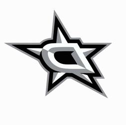 Dallas Stars NHL Hockey Full Color Logo Sports Decal Sticker