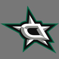 Dallas Stars NHL Hockey Vinyl Sticker Car Truck Window Decal
